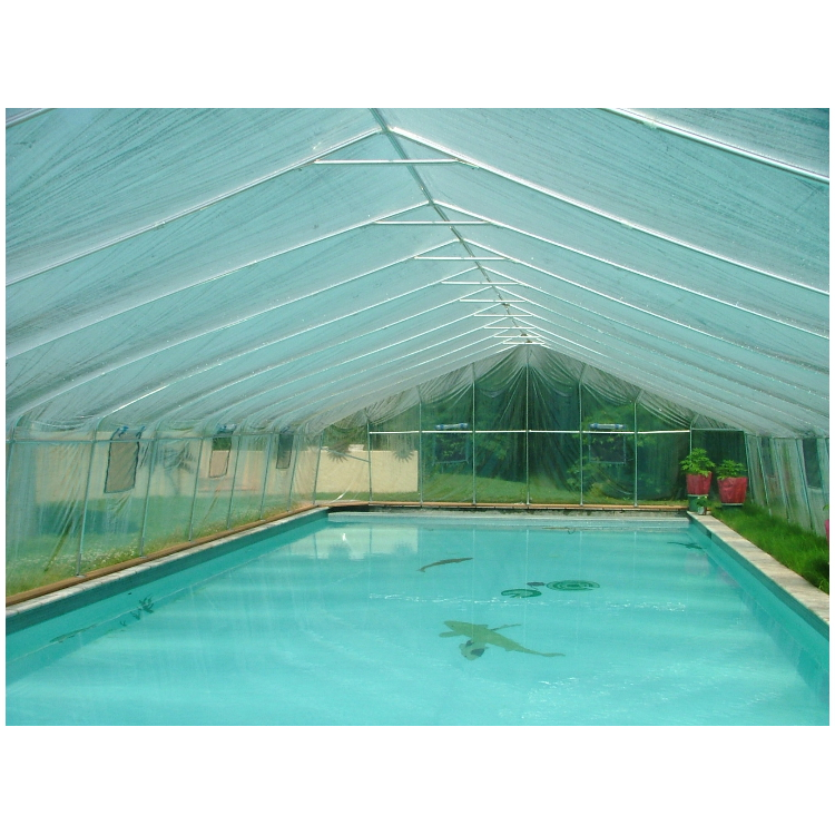 Inground Pool Covers Solar Swimming Pools Photos