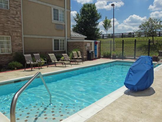 backyard pools louisville