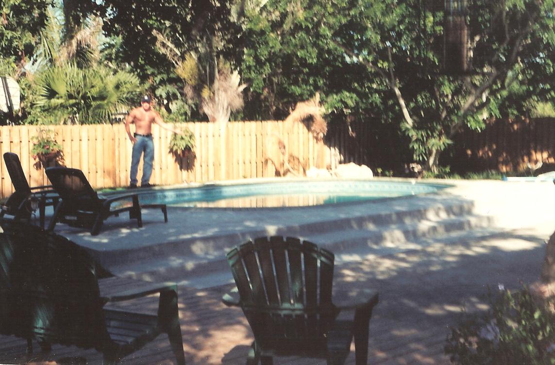 inground pool prices tampa