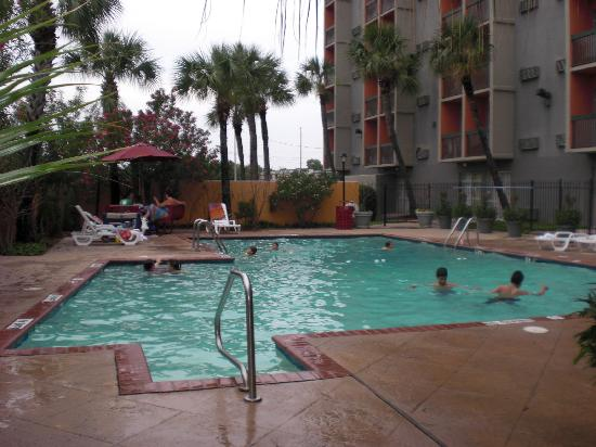 pool swimming games online